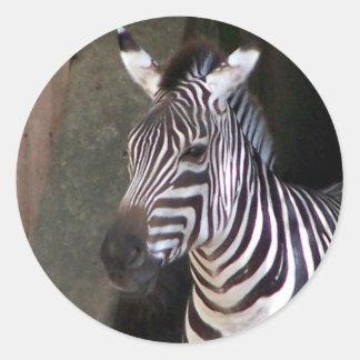 grants zebra classic round sticker