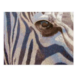 Grant's Zebra Postcard