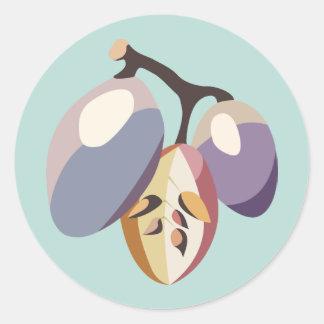 Grape fruit illustration classic round sticker