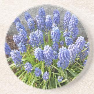 Grape Hyacinth Beverage Coaster