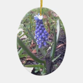 Grape Hyacinth Blossom Photography Ceramic Oval Ornament