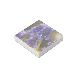 Grape Hyacinth Stone Magnet