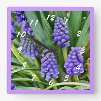 Grape Hyacinth Square Clock- customize Wallclock