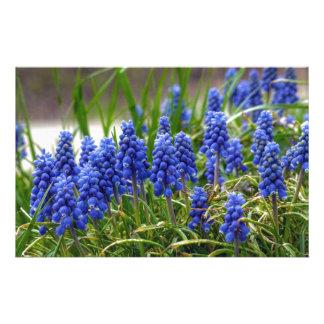 Grape Hyacinth Stationery