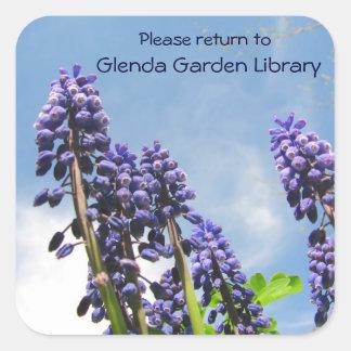 Grape Hyacinths Bookplate ~ sticker