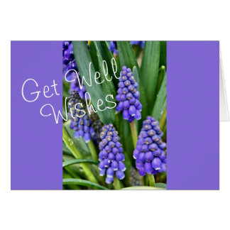 Grape Hyacinths - customize for any occasion Card