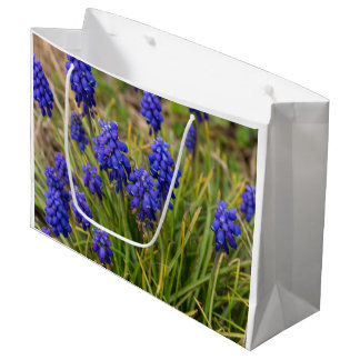 Grape Hyacinths Family Large Gift Bag