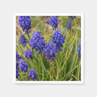 Grape Hyacinths Family Napkin