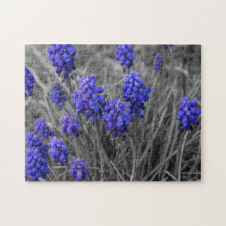 Grape Hyacinths Family Select Jigsaw Puzzle