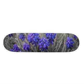 Grape Hyacinths Family Select Skateboard Deck