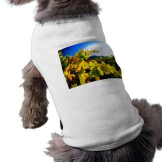 Grape Leaves and the Sky Doggie Tee Shirt