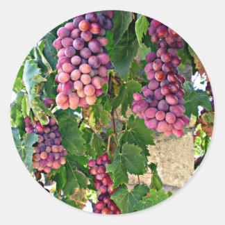 Grape Vine Classic Round Sticker