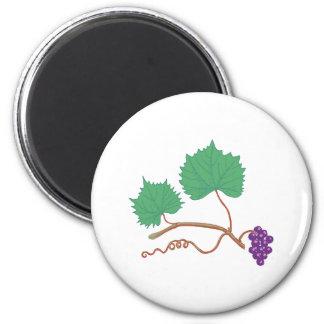 Grape vine grape vine fridge magnets
