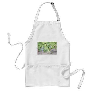 Grape vine nature and wine lover photograph apron