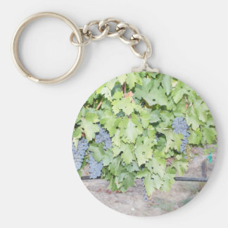 Grape vine nature and wine lover photograph keychain