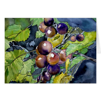 grape vine still life modern fruit greeting card