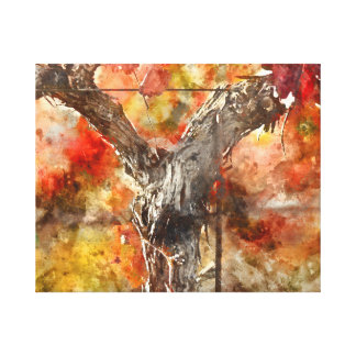 Grape Vines in the Fal Canvas Print