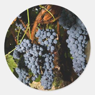 Grape Vineyard 2 Classic Round Sticker