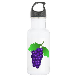 Grapes 532 Ml Water Bottle