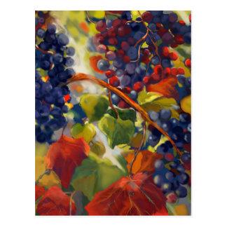 Grapes Art Postcard