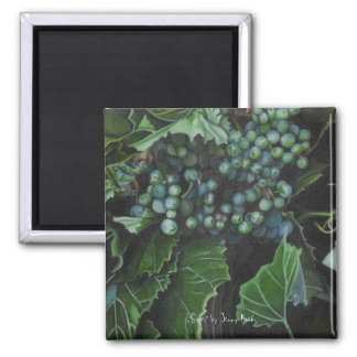 """Grapes"" by Jenny Koch Square Magnet"