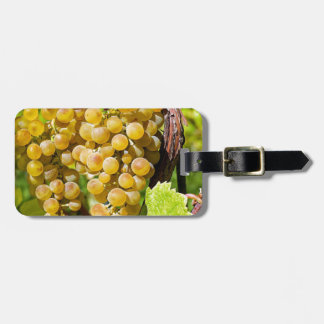 Grapes Fruit Gold Table Grapes Healthy Grapevine Luggage Tag
