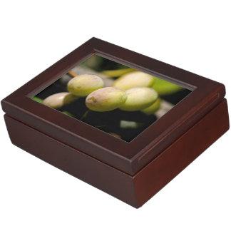 Grapes Keepsake Box