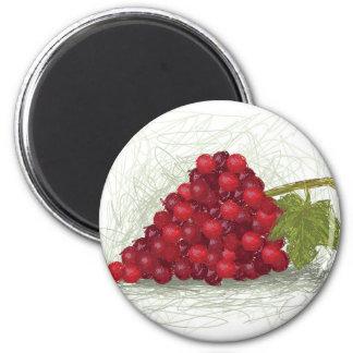 grapes refrigerator magnets