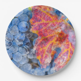Grapes on the Vine in the Autumn Season 9 Inch Paper Plate