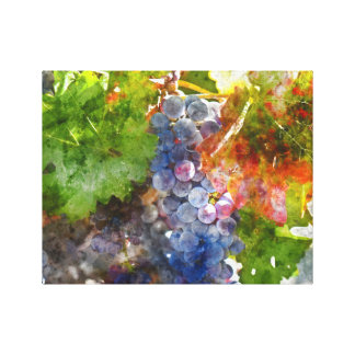 Grapes on the Vine in the Autumn Season Canvas Print