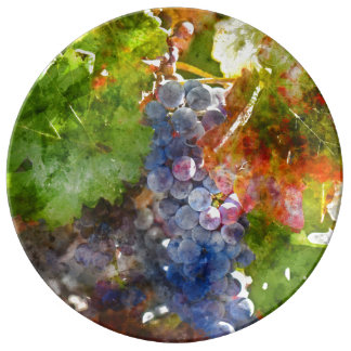 Grapes on the Vine in the Autumn Season Porcelain Plates