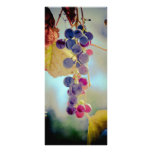 Grapes Personalized Rack Card