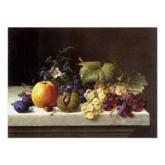 Grapes Plums Etc. On A Marble Ledge Poster