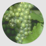 Grapes Round Sticker