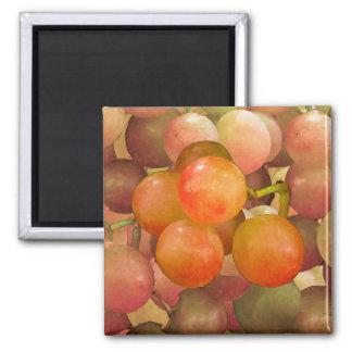 Grapes Un-Wrath Square Magnet