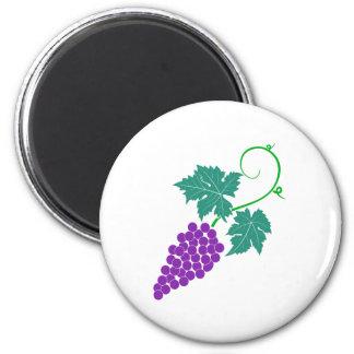 Grapes vine grapes grapevine fridge magnet