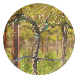 Grapes Vines in Spring Dinner Plates