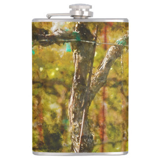 Grapes Vines in Spring in Napa Valley California Flasks