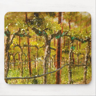 Grapes Vines in Vineyard during Spring Mouse Pad