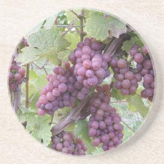 Grapevine Coaster