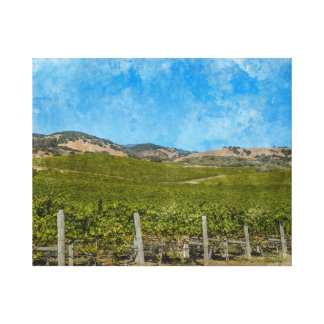 Grapevines in Napa Valley California Canvas Print