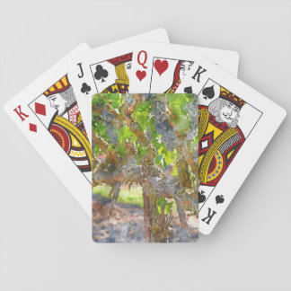 Grapevines in Napa Valley California Playing Cards