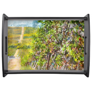 Grapevines in Napa Valley California Serving Tray