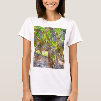 Grapevines in Napa Valley California T-Shirt