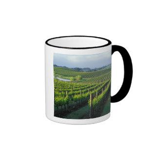 Grapevines in neat rows in California's Napa Ringer Coffee Mug