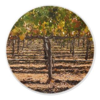 Grapevines in the Fall Ceramic Knob