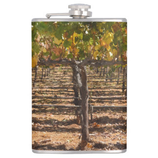 Grapevines in the Fall Hip Flask