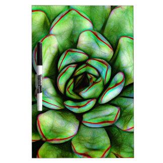 Graphic Succulent Dry Erase Board
