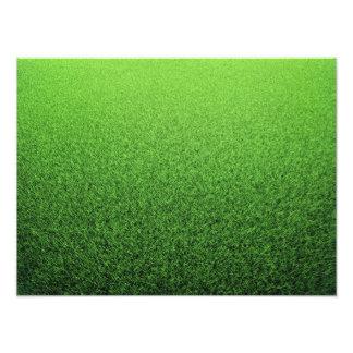 Grass Background. Fresh Green Lawn Photo Print