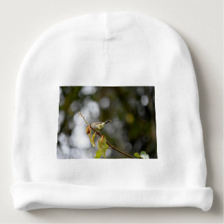 GRASS BIRD QUEENSLAND AUSTRALIA BABY BEANIE